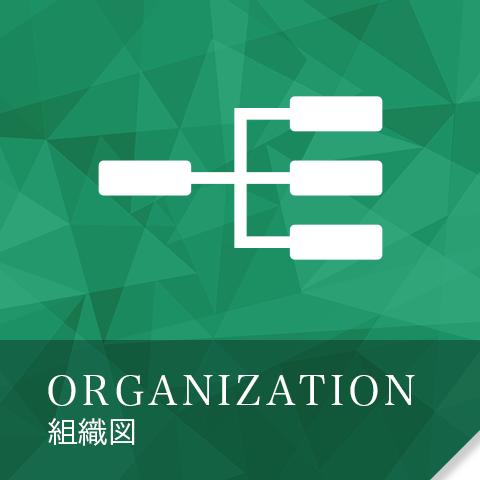ORGANIZATION 組織図